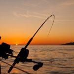 Oplev Øresund tæt på med en fisketur